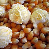 Bahan Mentah Popcorn